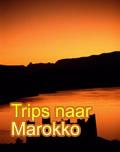 Trips naar Marokko